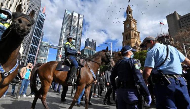澳洲疫情,示威抗议,骑警,警马