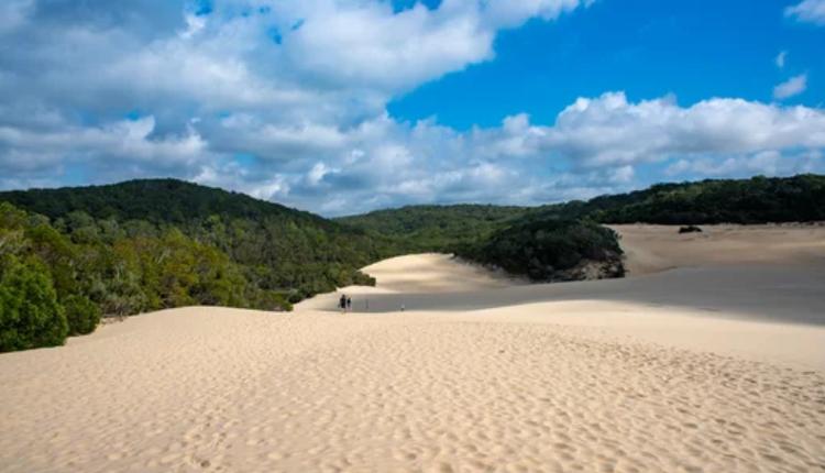 Great Sandy国家公园