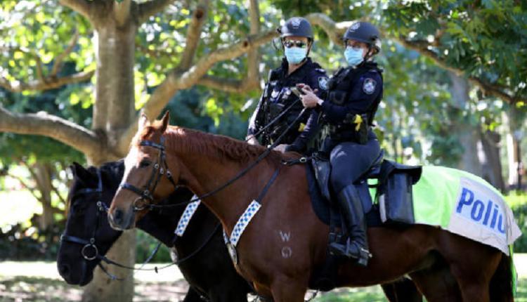 昆州警察,澳洲警察,骑警,马