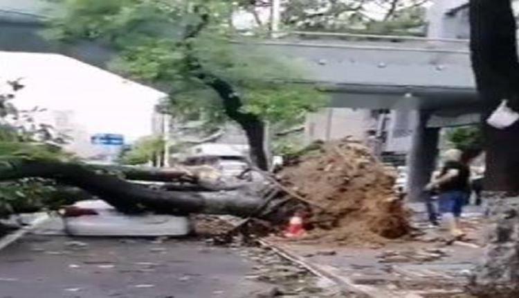卢碧台风再次避开台湾 登陆中国 两广福建暴雨淹水