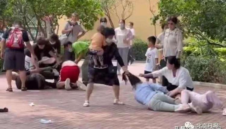 7日在北京大兴区的北京野生动物园内有两群游客在打架