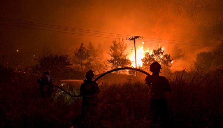 希腊野火,地中海野火