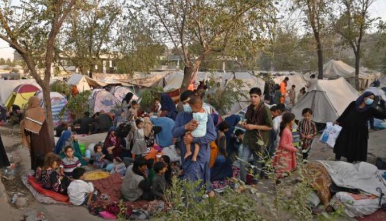 被迫流离失所的阿富汗民众