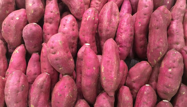 紫薯(图片来源:Piqsels)