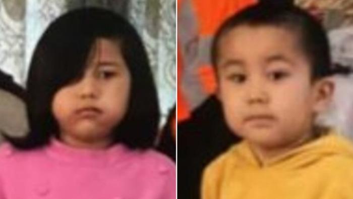 澳大利亚维州警方正在紧急寻找两名年龄分别为3岁和5岁的儿童