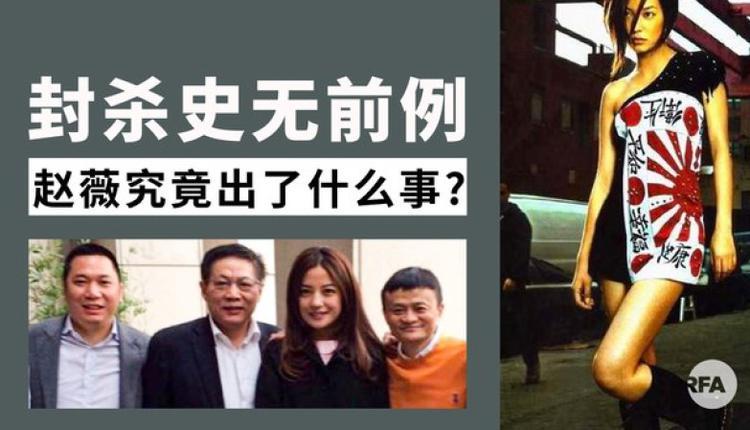 中国艺人赵薇遭全面封杀