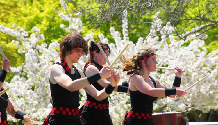 樱花节节目