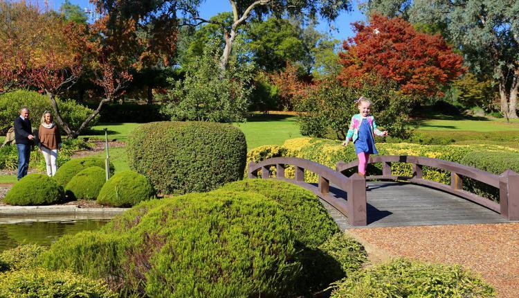 cowra澳洲旅游 日本花园