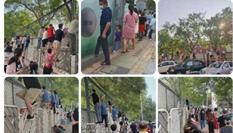 """只有中国才有 开学日学校围墙上""""长""""满了家长"""