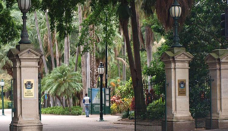 布里斯本植物园(City Botanic Gardens)