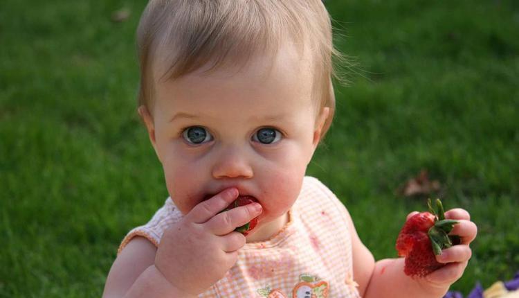 婴儿,草莓,吃草莓