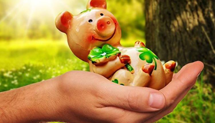 意外之财,钱,偏财,猪,储蓄