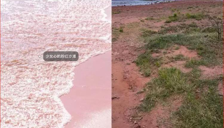 粉红沙滩的宣传图片-现实对照